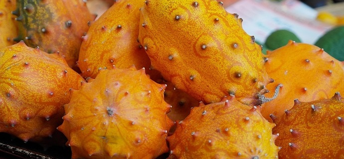 Horned melon is an exotic spiky fruit