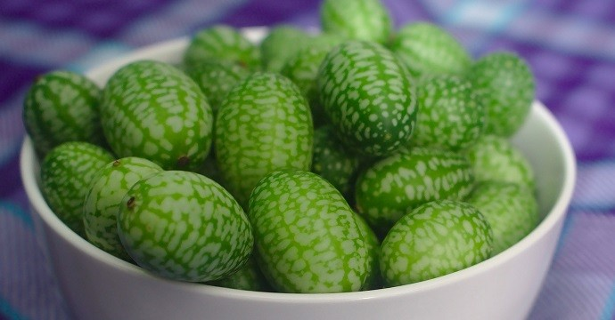 Cucamelon exotic fruit