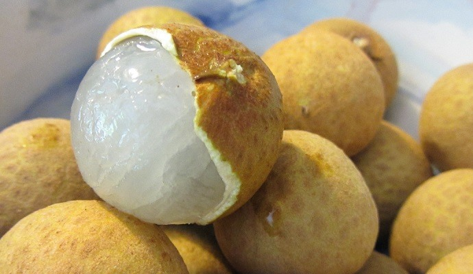 are fruit sugars healthy longan fruit