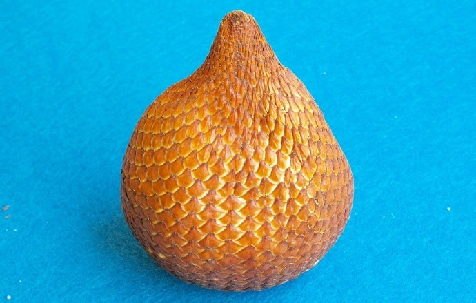 Snake fruit health benefits