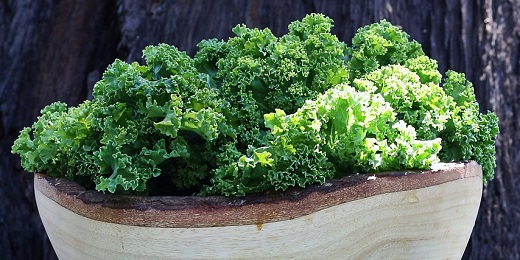 Kale is a classic vegan source of protein