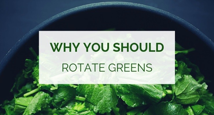 Why you need to rotate greens