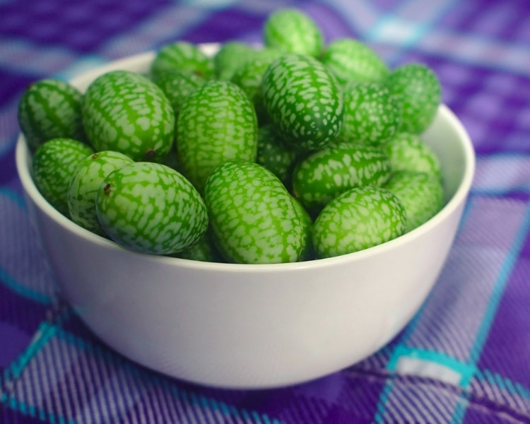 Cucamelon is an exotic fruit