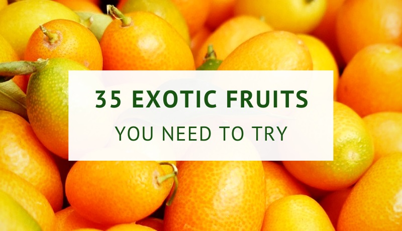 Exotic fruits list