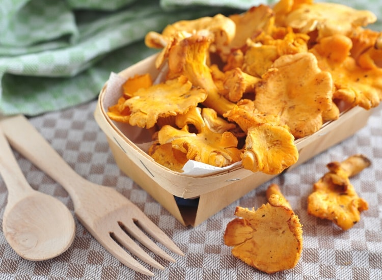 Chanterelle mushrooms in cup