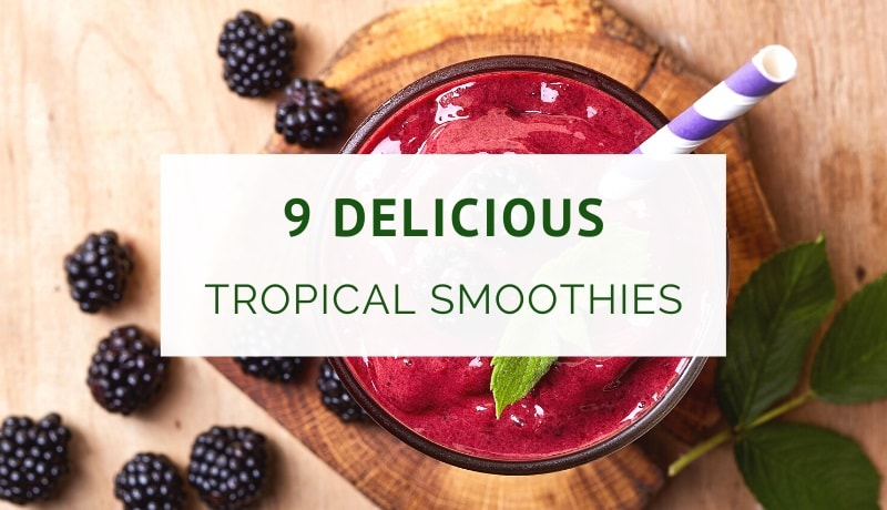 Tropical smoothie recipes