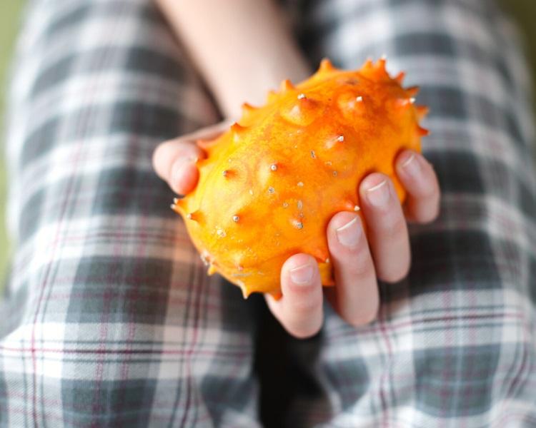 Horned melon is a spiky fruit