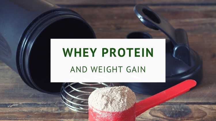 Does whey protein make you gain weight (guide)