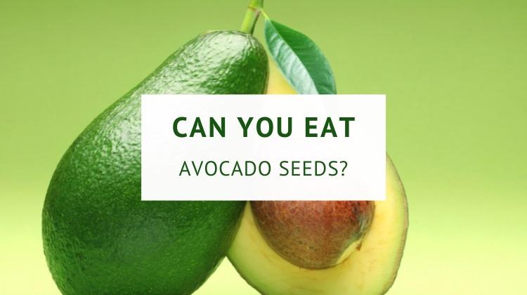Can you eat avocado seeds?
