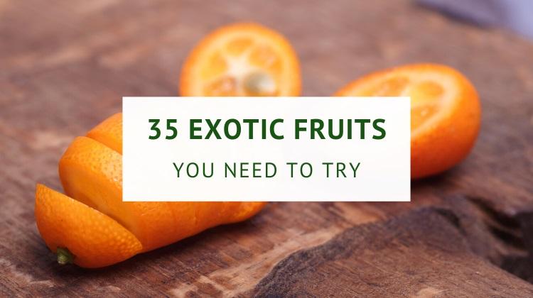 Exotic fruits list