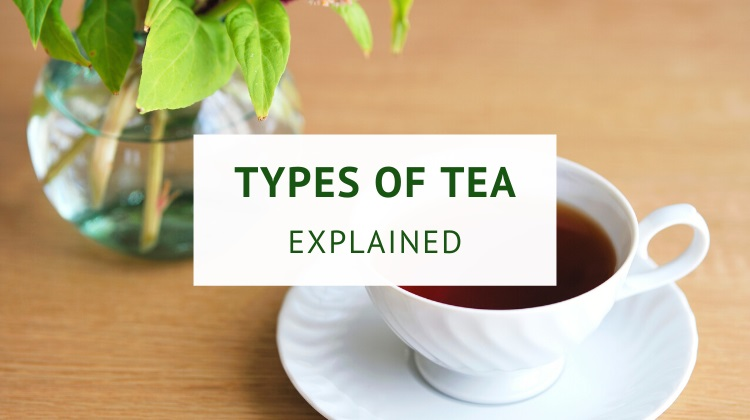 White tea vs green tea vs black tea