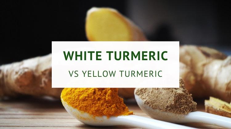 White turmeric versus yellow turmeric