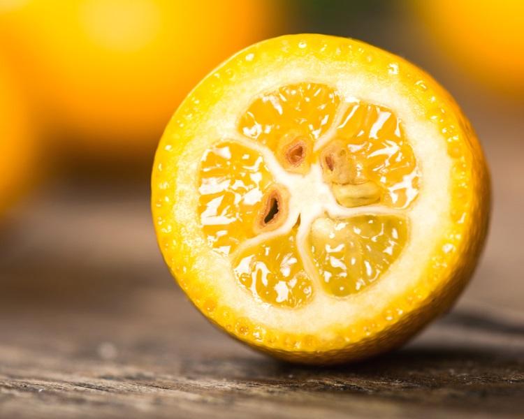 Flesh of a kumquat fruit