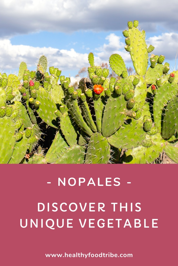 Guide to the nopal cactus and nopales