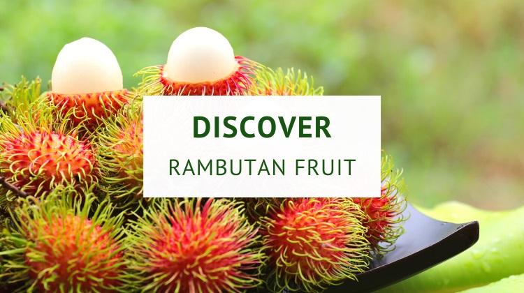 What is rambutan fruit?